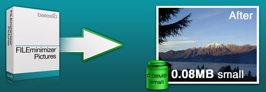 FILEminimizer Pictures Portable