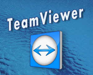 TeamViewer Portable 12.0.72365 - Free Remote Access Software