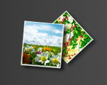 Aneesoft 3D Flash Gallery Portable 2.4.0.0 - 3D Flash Slideshow Maker